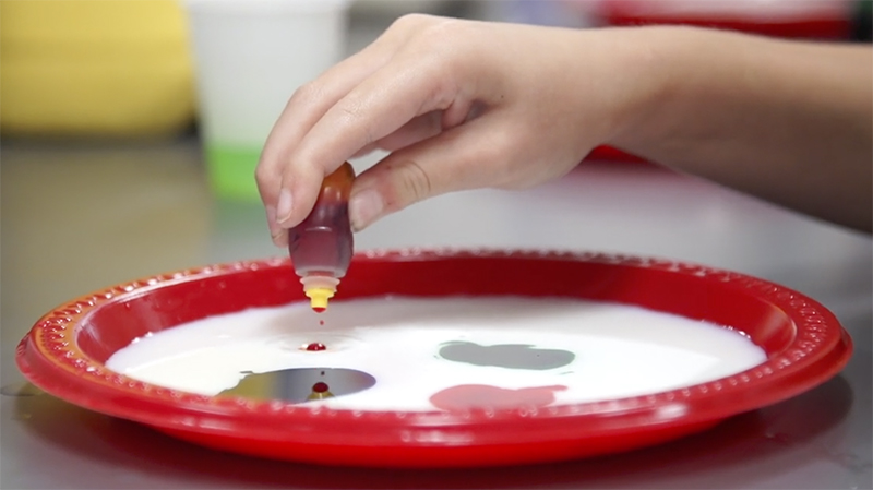 Dropping some food coloring onto a raised-edge plate full of milk.